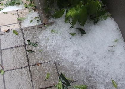 玄関に積もった雹